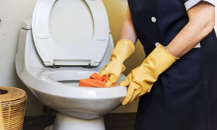 best automatic toilet bowl cleaner