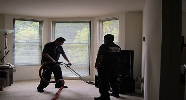 how to clean carpet without a vacuum