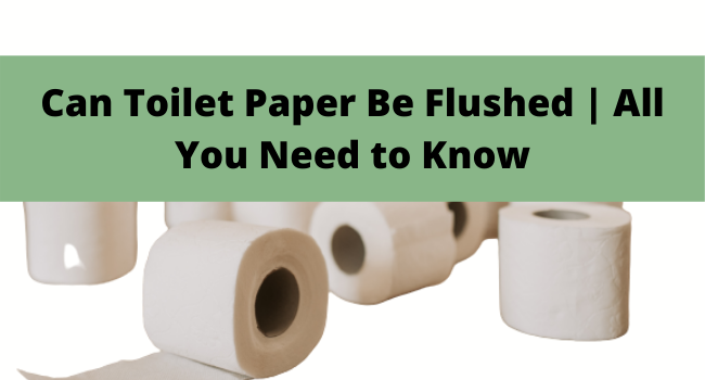 Can Toilet Paper Be Flushed